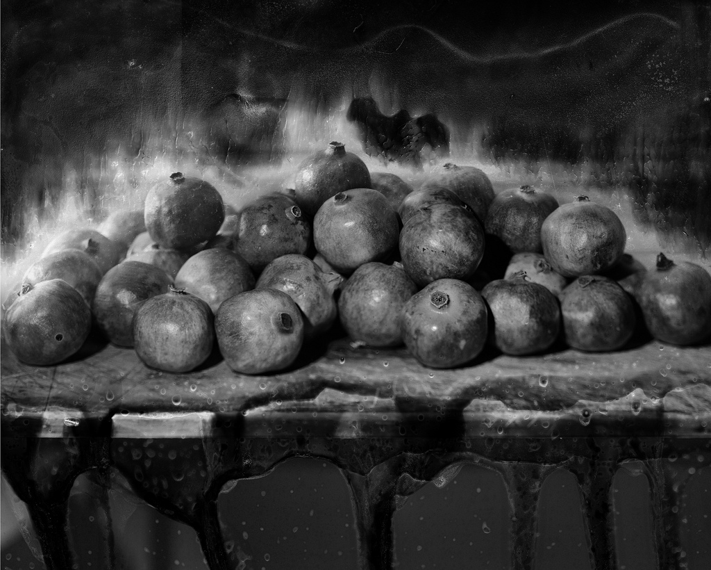 Feast, Still Lifes, Sepia, selenium toned gelatin silver print, 18x23 inches, Edition of 10, 2010, $1500 framed