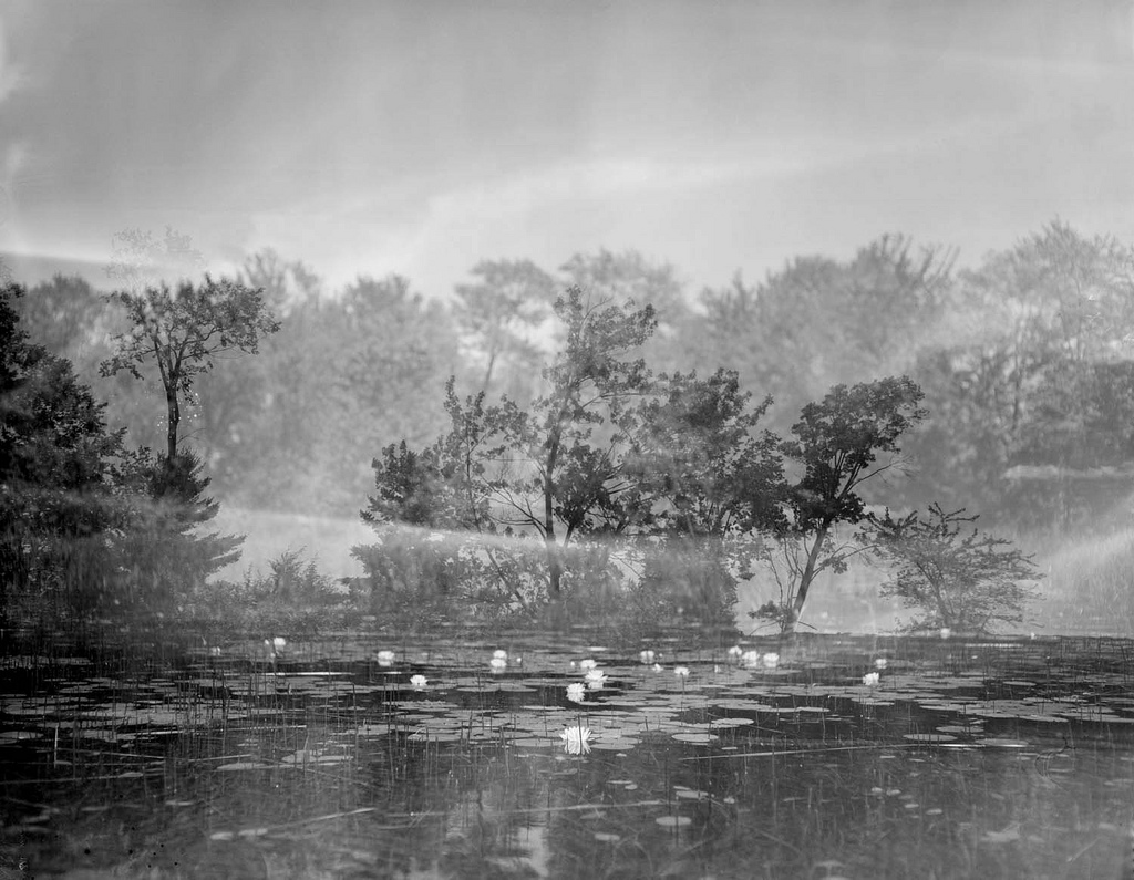 Moira Lake, B-Side Series, Sepia, selenium toned gelatin silver print, 18x23, Edition of 10, 2011, $1500 Framed