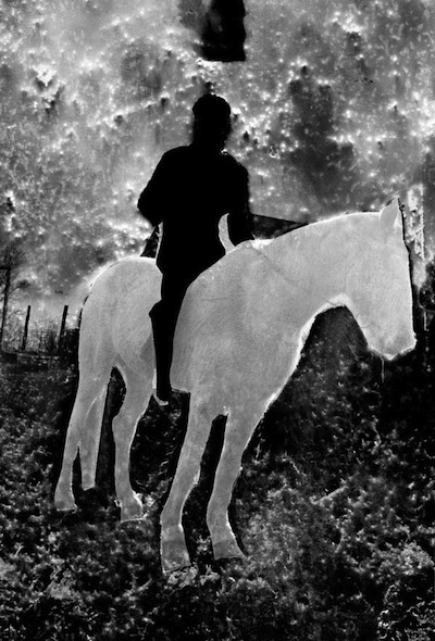 The Horseman, Elephant Series, Sepia, Slenium Toned Gelatin Silver Print, 18 x 23 inches, 2008, Edition of 10, $1500.