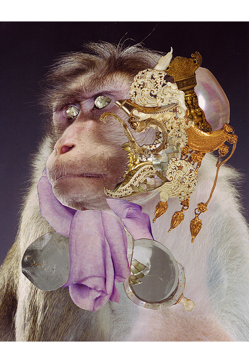 Monkey 6, Collage, 10 x 8 inches (approx), 2011, $650